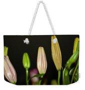 Lilies In A Row Weekender Tote Bag