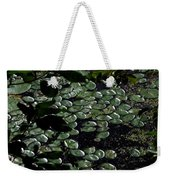 Lilly - Greeting Card Weekender Tote Bag