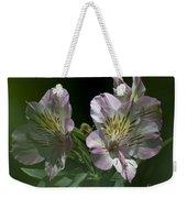 Lily - Liliaceae 3 Weekender Tote Bag