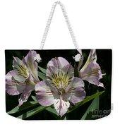 Lily - Liliaceae Weekender Tote Bag