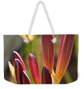 Lily Candles Weekender Tote Bag