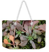 Lime Stonecrop  Leaves In Winter Weekender Tote Bag