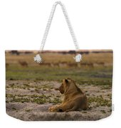 Lion Lazy Weekender Tote Bag
