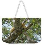 Lion Lookout Weekender Tote Bag