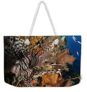 Lionfish, Indonesia Weekender Tote Bag