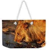 Lion's Pride Weekender Tote Bag