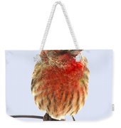 Little Beauty Male Finch I Weekender Tote Bag