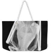 Little Brown Bat X-ray Weekender Tote Bag