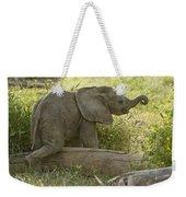 Little Cutie Weekender Tote Bag