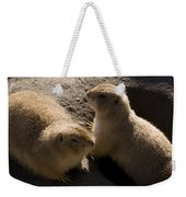 Little Dogs On The Prairie Weekender Tote Bag