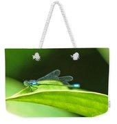 Little Dragonfly Weekender Tote Bag