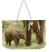 Little Ellie Weekender Tote Bag