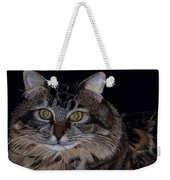 Little Girl - Maine Coon Cat Painting Weekender Tote Bag