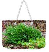 Little Grass Mound Weekender Tote Bag