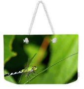little Green wings Weekender Tote Bag