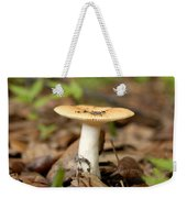 Little One Weekender Tote Bag