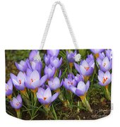 Little Purple Crocuses Weekender Tote Bag