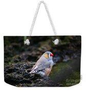 Little Red Beak Weekender Tote Bag