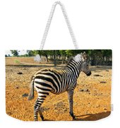 Little Stripes Weekender Tote Bag