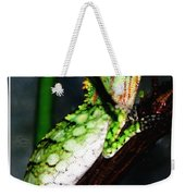 Lizard With Oil Painting Effect Weekender Tote Bag