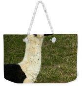 Llama Portrait Weekender Tote Bag