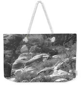 Lone Ram At Red Rock Canyon Weekender Tote Bag