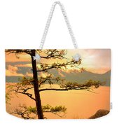 Lone Tree At Ellison Park Weekender Tote Bag