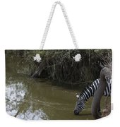Lone Zebra At The Drinking Hole Weekender Tote Bag