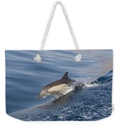 Long-beaked Common Dolphin Delphinus Weekender Tote Bag
