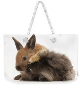 Long-haired Guinea Pig And Young Rabbit Weekender Tote Bag