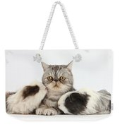 Long-haired Guinea Pigs And Silver Weekender Tote Bag