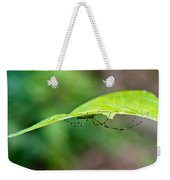 Long Leg Spider Weekender Tote Bag