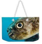 Long-spine Porcupinefish Diodon Weekender Tote Bag