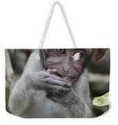 Long-tailed Macaque Macaca Fascicularis Weekender Tote Bag