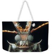 Longhorn Beetle Macrodontia Cervicornis Weekender Tote Bag
