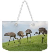 Look What I Found Weekender Tote Bag by Carol Groenen