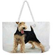 Looking For Fun Weekender Tote Bag