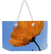 Looking Sideways Weekender Tote Bag
