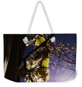 Looking Straight Up And Out Our Window Weekender Tote Bag