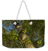 Looking Up At A Tree Trunk Weekender Tote Bag