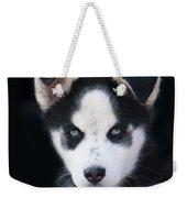 Lop Eared Siberian Husky Puppy Weekender Tote Bag