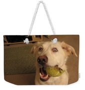 Lord Please Send Me A New Whole Ball Weekender Tote Bag