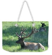Lounging Elk Weekender Tote Bag