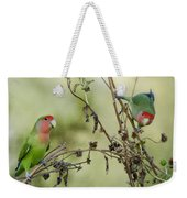 Lovebirds At Play  Weekender Tote Bag