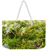 Lovely Green Lichen Weekender Tote Bag