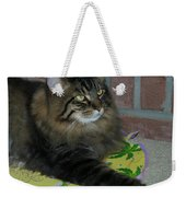 Lucky The Cat Weekender Tote Bag