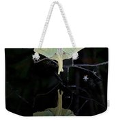 Luna Moth And Reflection Weekender Tote Bag