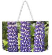Lupine Lupinus Sp Sea Horse Variety Weekender Tote Bag