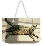 Lying In The Sunlight Weekender Tote Bag