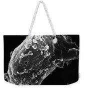 Lymphocyte With Hiv Cluster Weekender Tote Bag